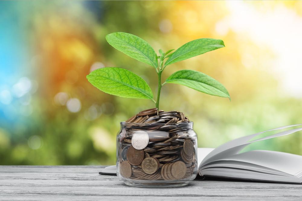 Livros sobre investimentos