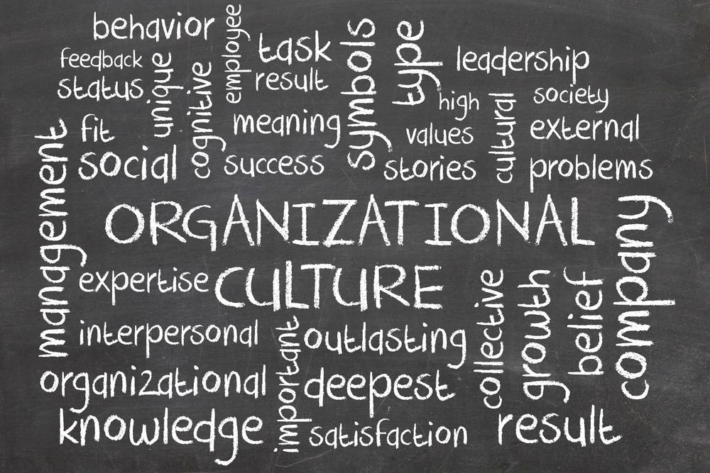 livros sobre cultura organizacional 12min