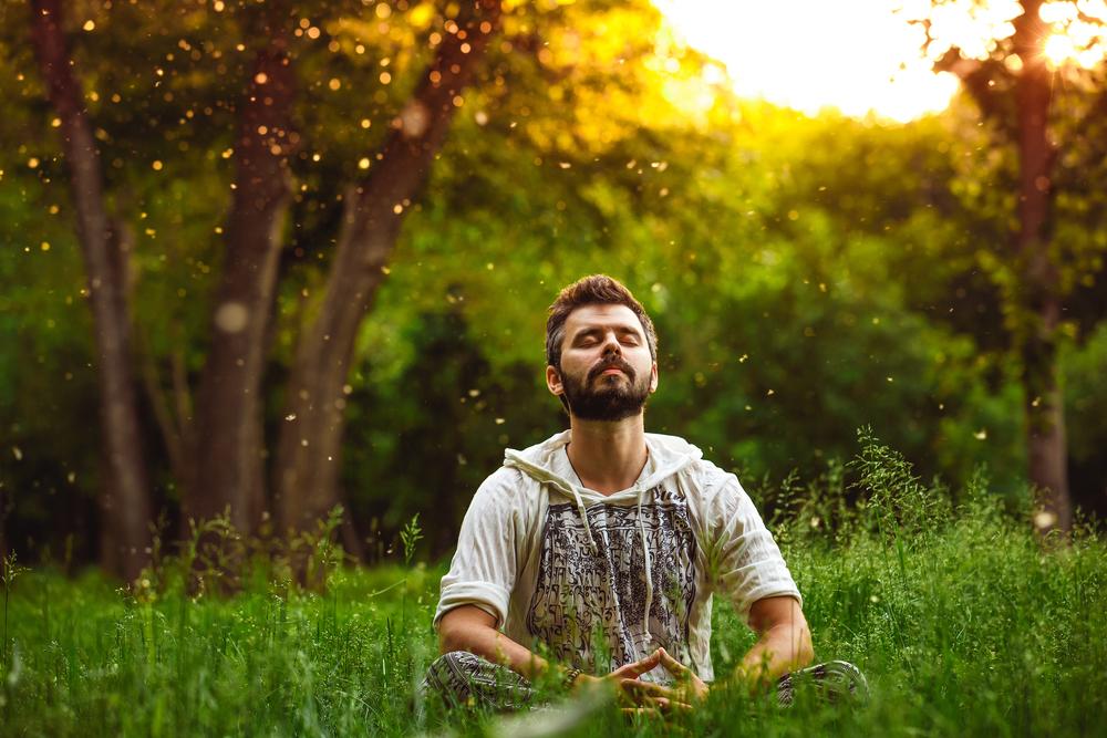 atenção plena mindfulness