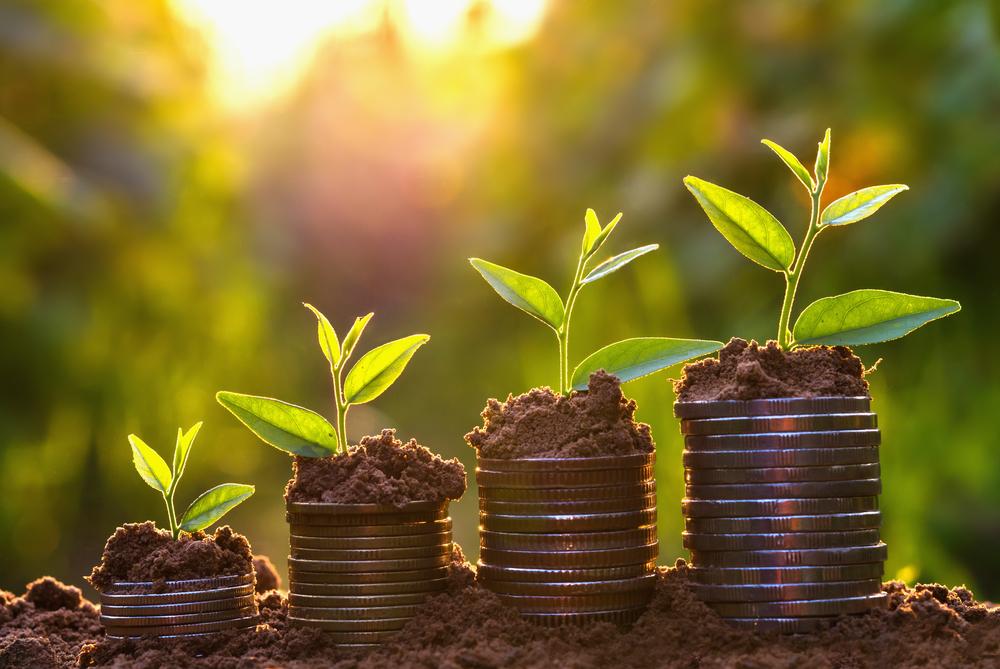 blogs de finanças português