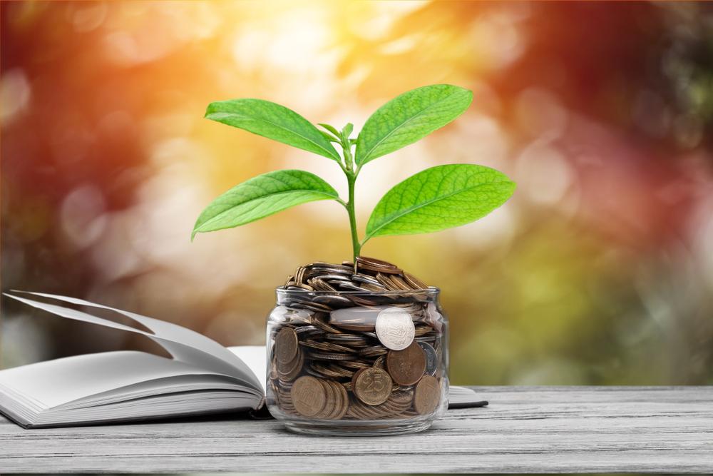 investimentos inteligentes pdf