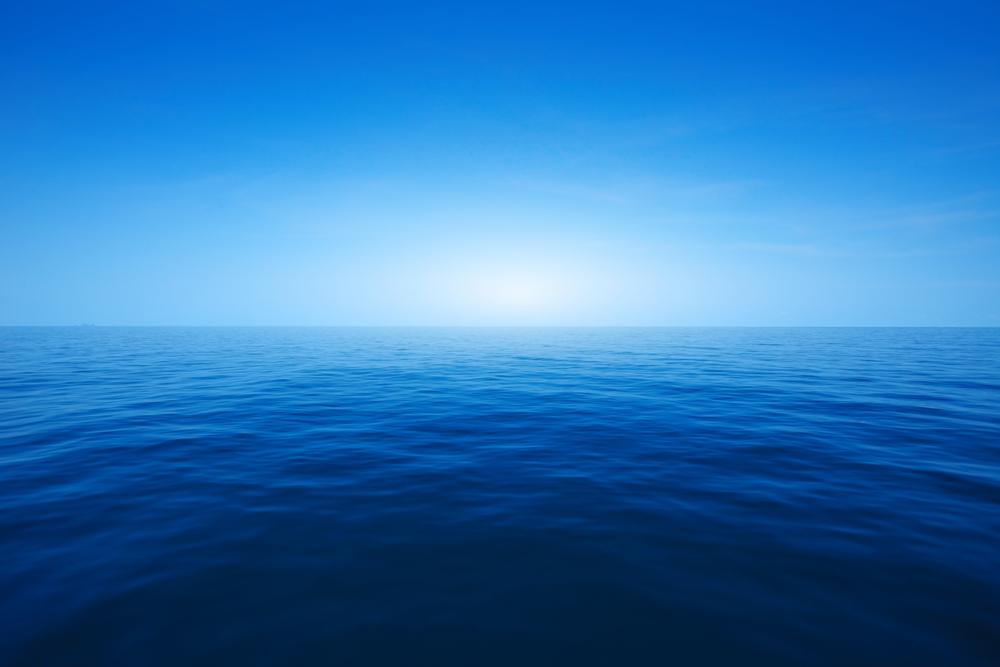 A Estratégia do Oceano Azu