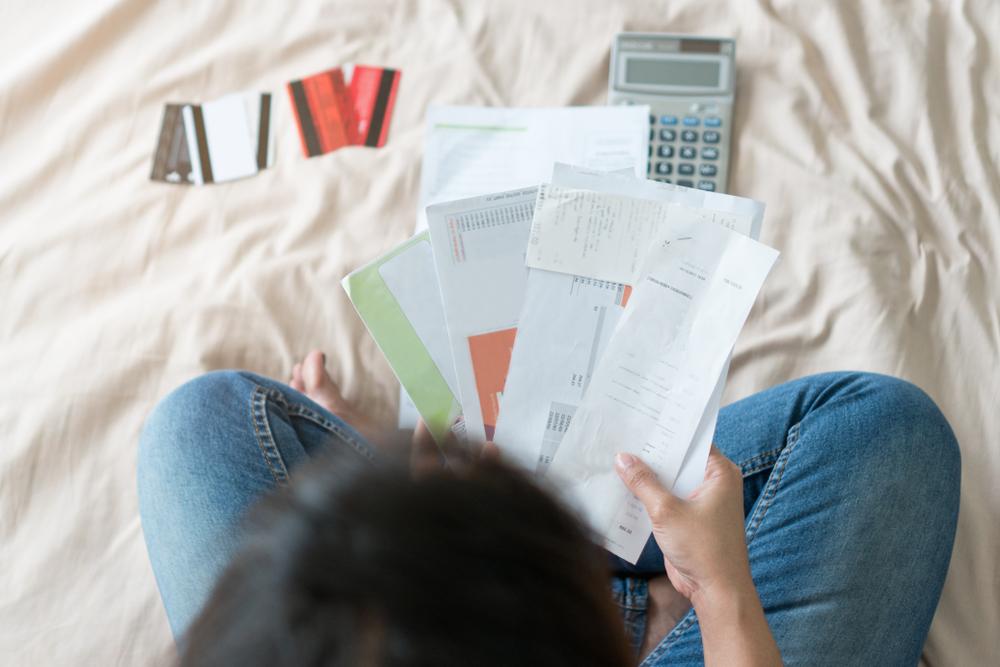 como organizar sua vida financeira pdf free