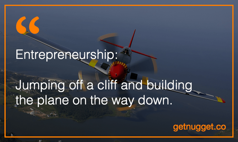 Entrepreneurship - Jumping off a cliff and building the plane on the way down