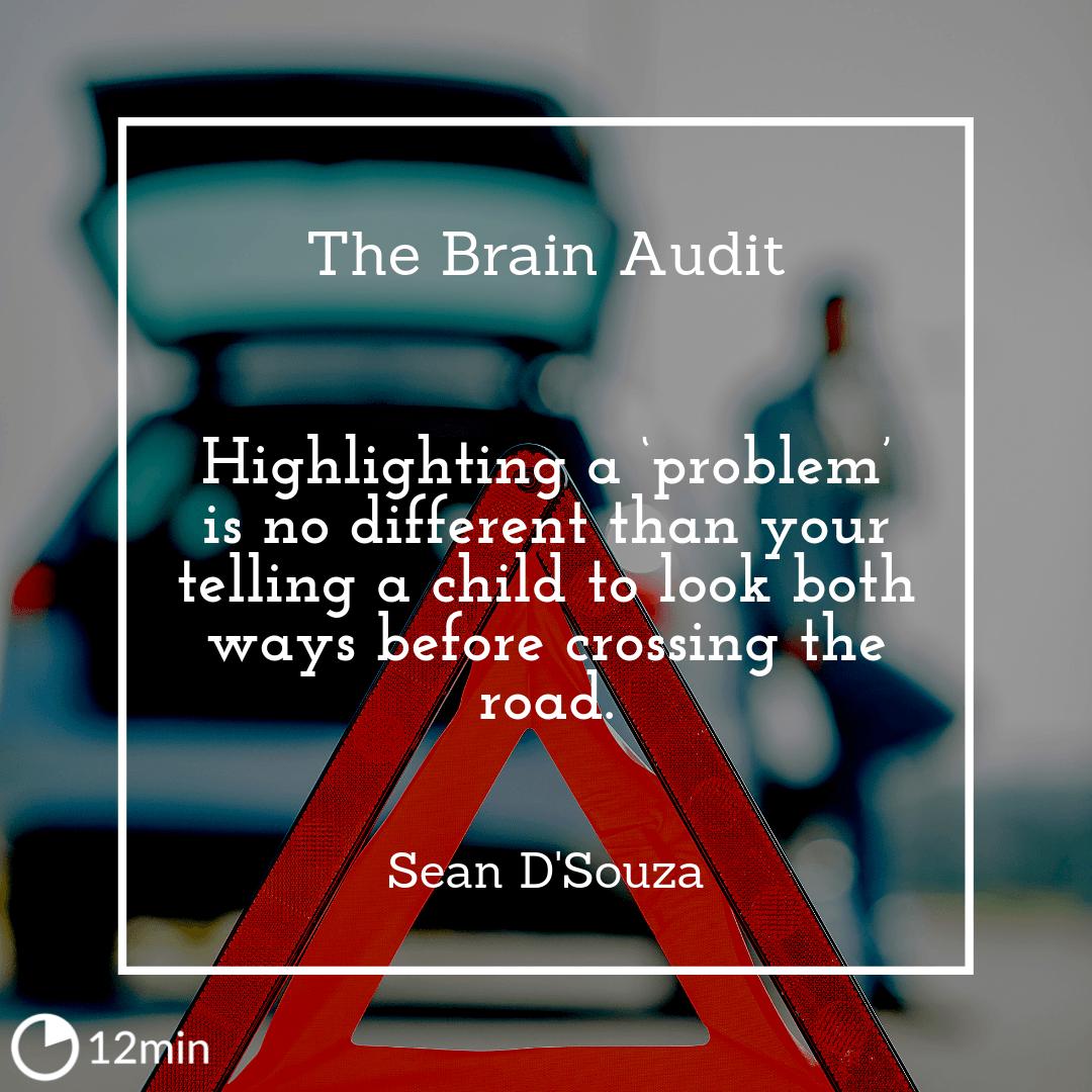 The Brain Audit Summary