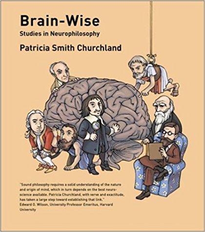 Brain-Wise Summary