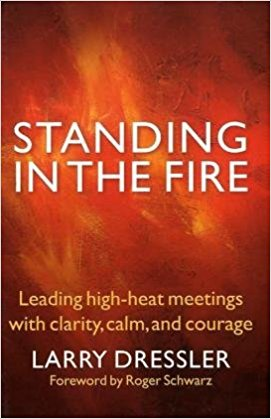 Standing in the Fire Summary