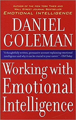 Working With Emotional Intelligence Summary