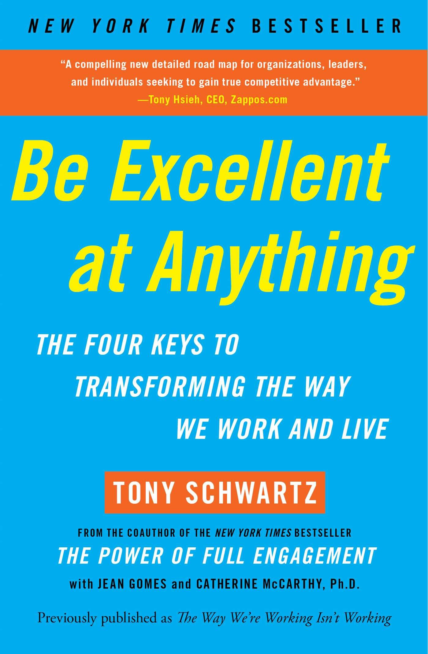 Be Excellent at Anything Summary