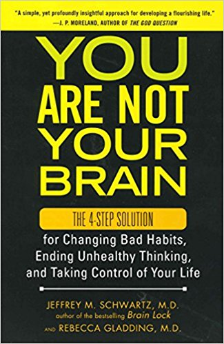 You Are Not Your Brain Summary