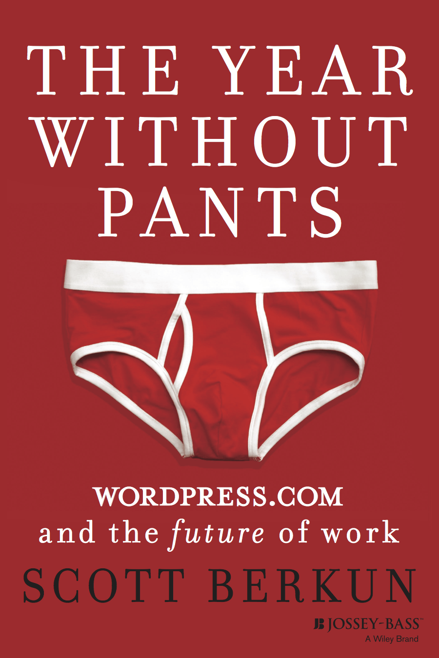 The Year Without Pants Summary