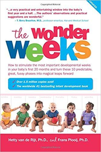 The Wonder Weeks Summary