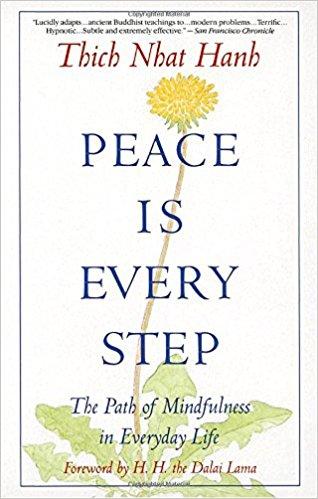 Peace Is Every Step Summary