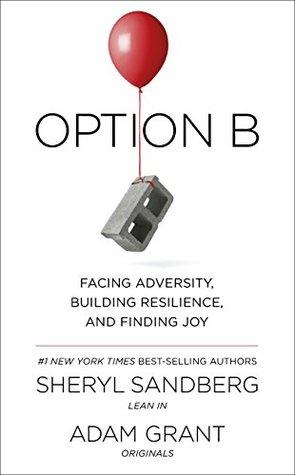 Option B Summary