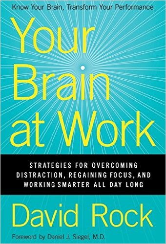 Your Brain at Work Summary