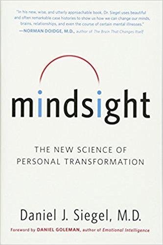 Mindsight Summary