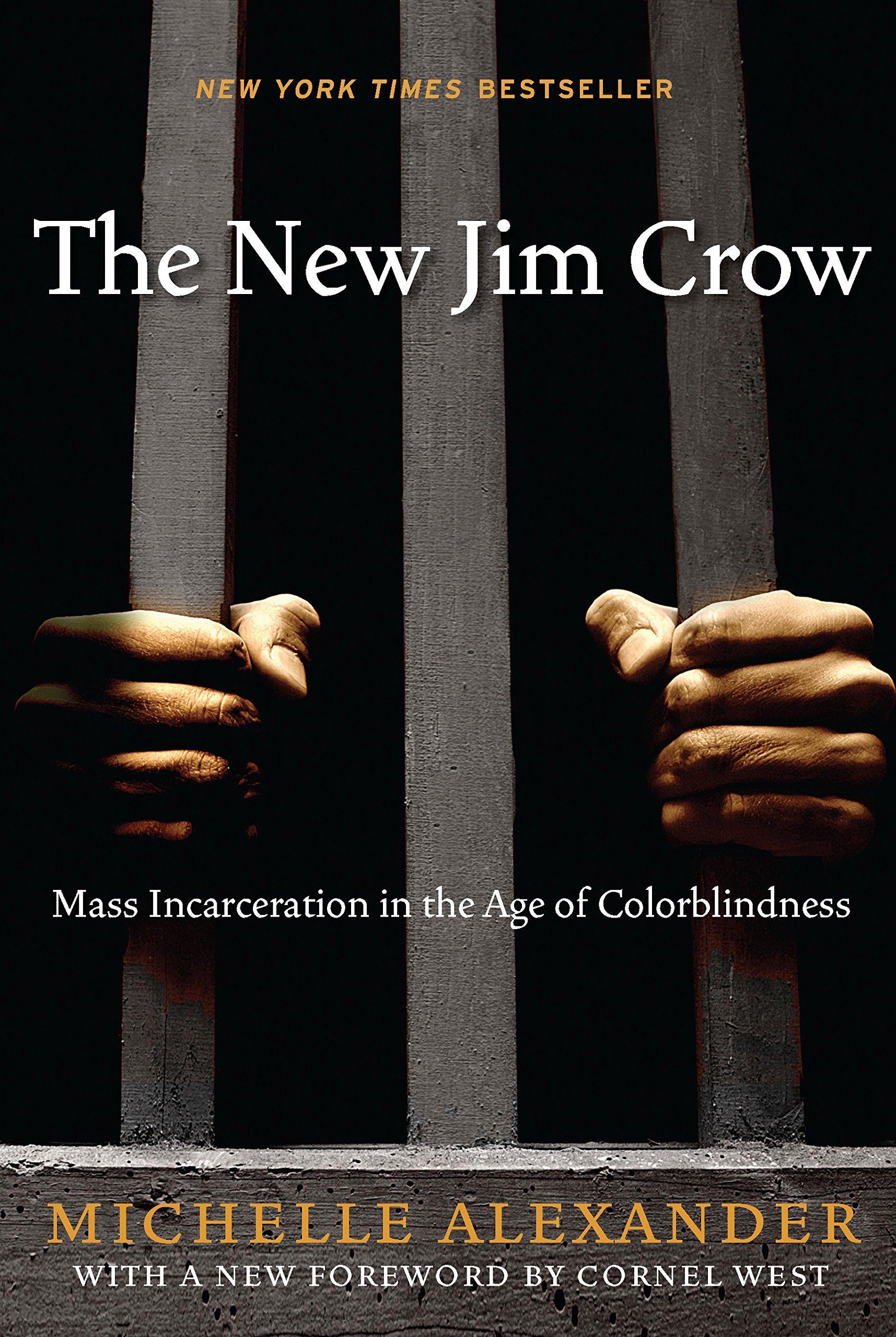 The New Jim Crow PDF Summary