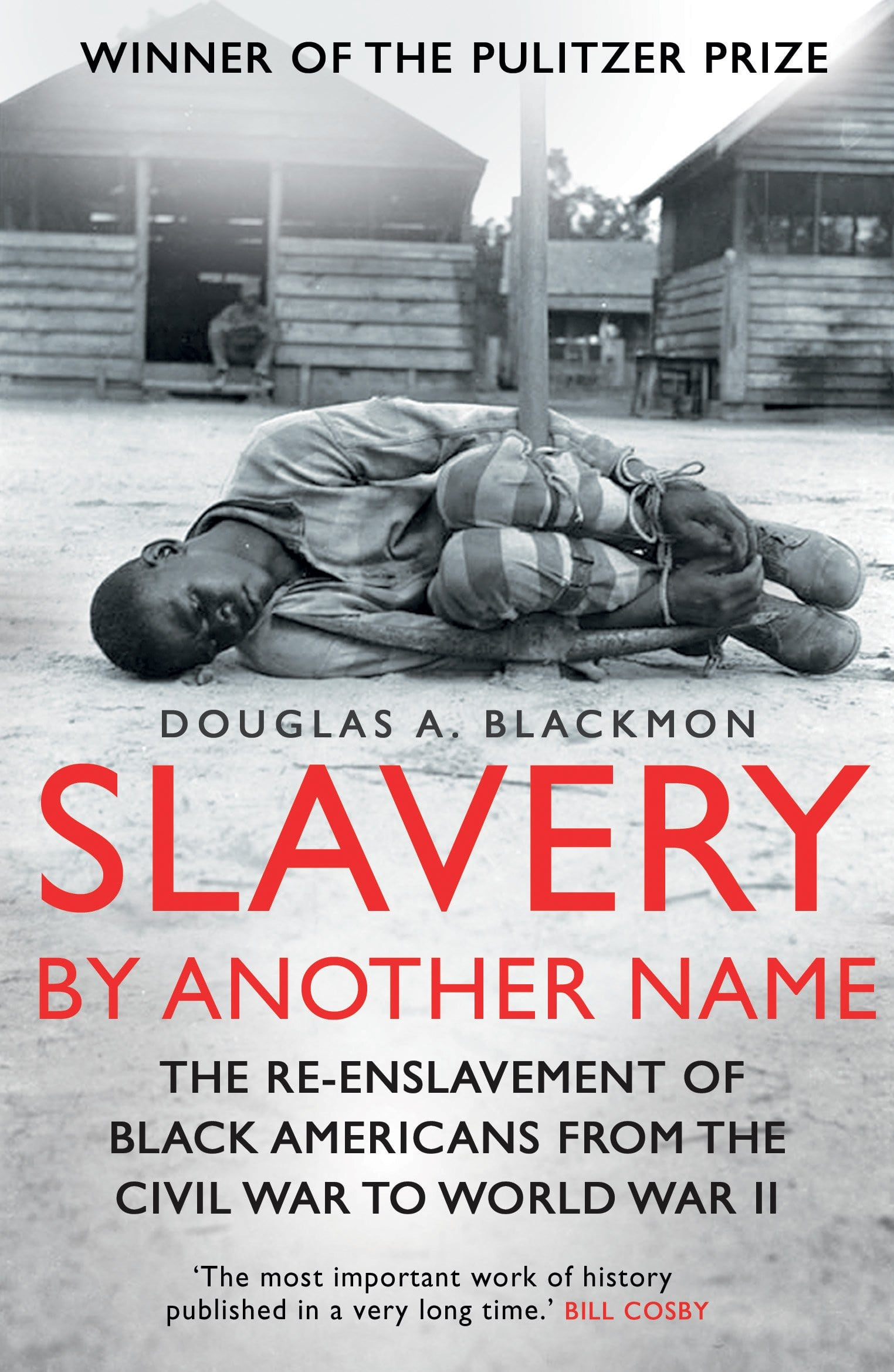 Slavery by Another Name PDF