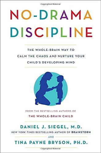 No-Drama Discipline PDF Summary