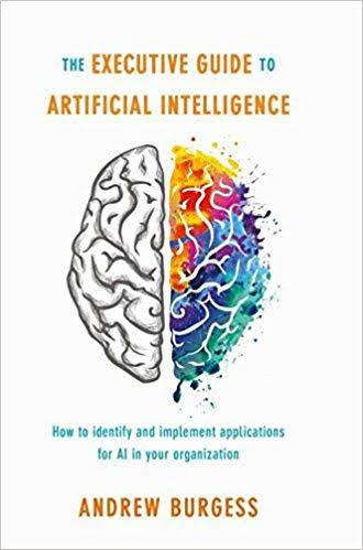 The Executive Guide to Artificial Intelligence PDF Summary